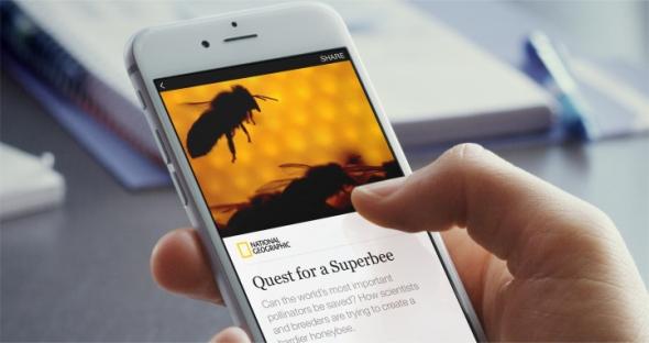 Facebook Instant Articles - Beispiel eines Artikels von National Geographic auf dem Smartphne